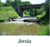 Jiesia-p